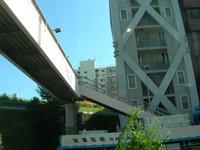 DSCN7051.jpg