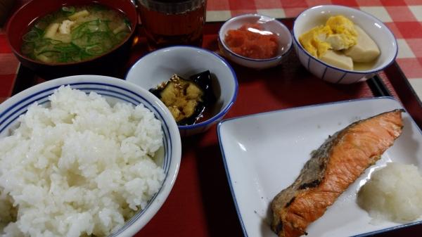 20170605_まいどおおきに食堂1.jpg