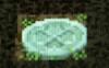 模様入りの飛び石