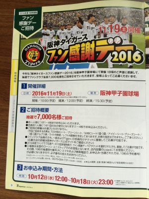 阪神タイガース ソフトボール
