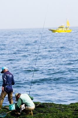 徳島の釣り
