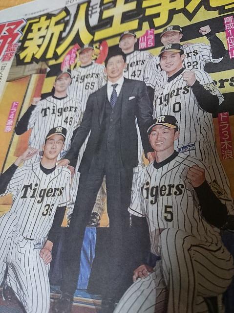 徳島 ソフトボール 阪神