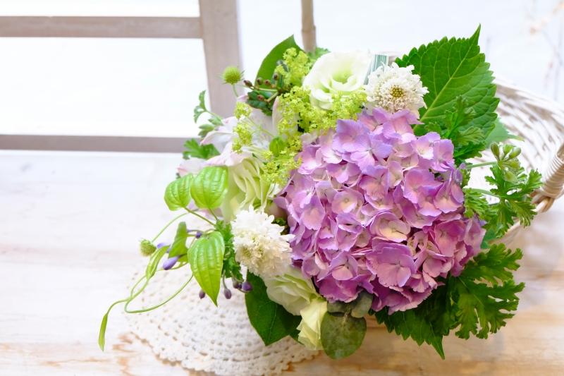 紫陽花花束