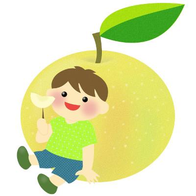 船橋産の梨の画像