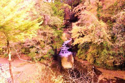 見晴らし台からみた濃溝の滝の画像