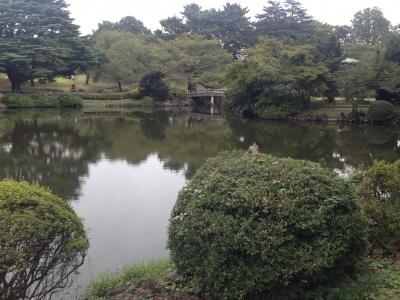 gyon garden view