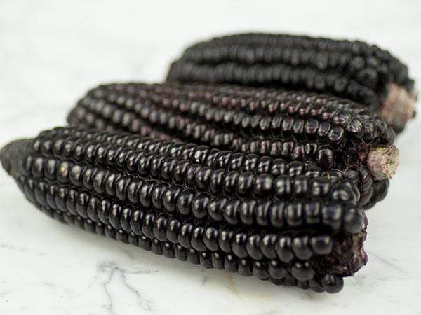 ブラックコーン