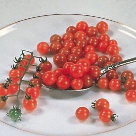 スプーントマト