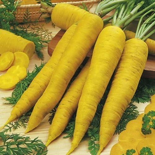 黄色いニンジン