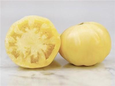 ホワイトワンダートマト