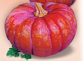 カバズかぼちゃ