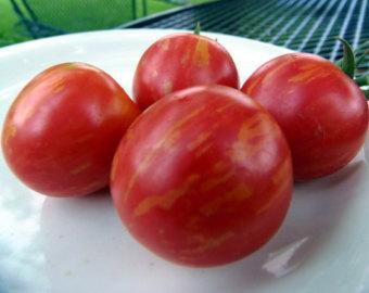 ストロベリータイガートマト