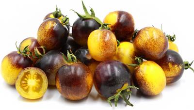 ボスクブルーバンブルビートマト