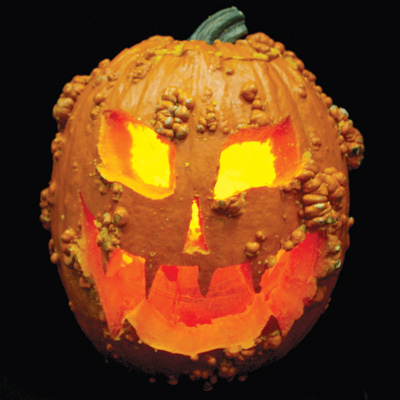 ハロウィンかぼちゃ(Knuckle Head)