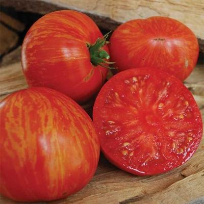 レッドフューリーボアートマト
