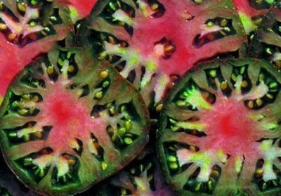 ブラックシーマントマトの種子