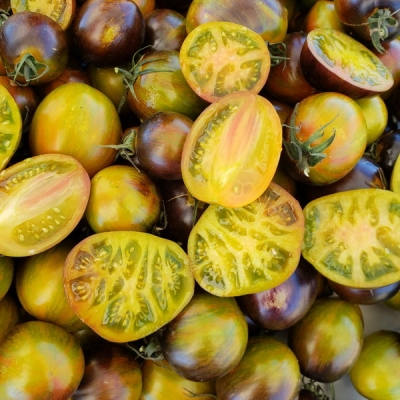 アトミックフュージョントマト
