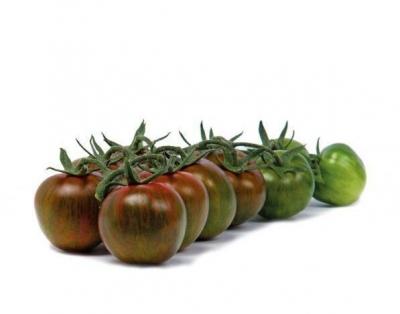 ゼブリーノチェリートマトの種子