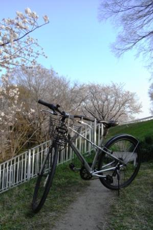 クロスバイクと健康
