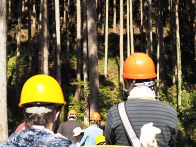 木育イベントに参加しました