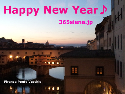 happy new year2014siena