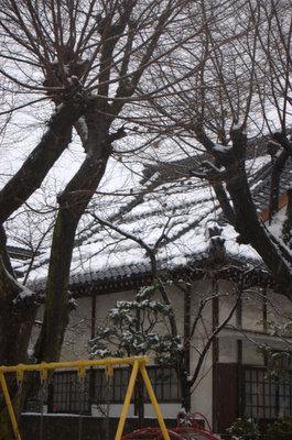 雪の花見公園