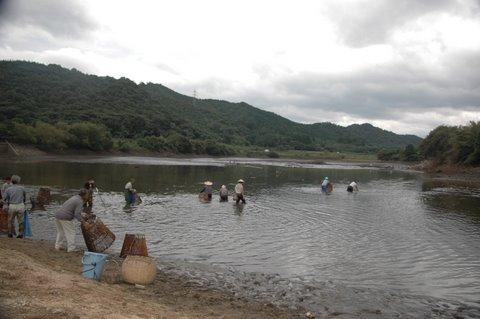 睦逢大堤のウグイつき漁