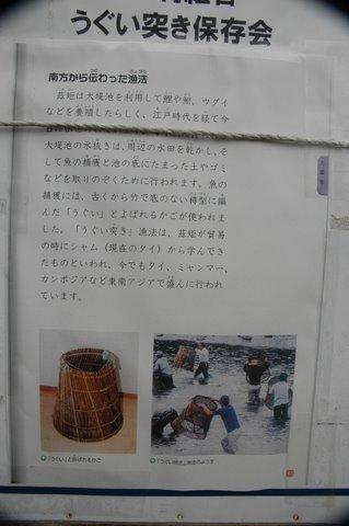 ウグイつき漁の説明 2