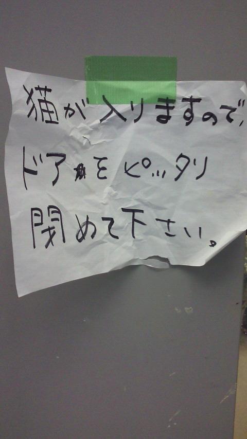 201211201056000.jpg