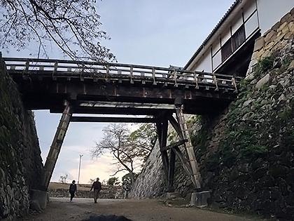 観光の秋 彦根城
