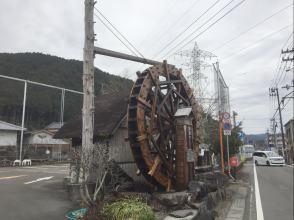 300109-6.JPG