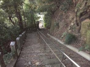 310115-5.JPG