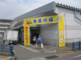 IMG_6364.jpg