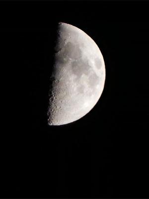 1/31(旧暦 睦月九日) 夕方 17時半頃の 上弦の月(九日月)