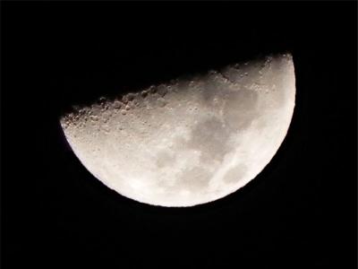 1/31(旧暦 睦月九日) 22時半頃 西の空の 上弦の月(九日月)