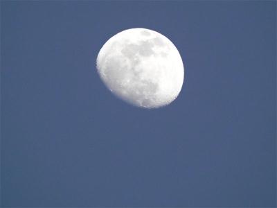 2/4(旧暦 睦月十三日) 17時過ぎ 青空と 闇の 狭間の 十三日月