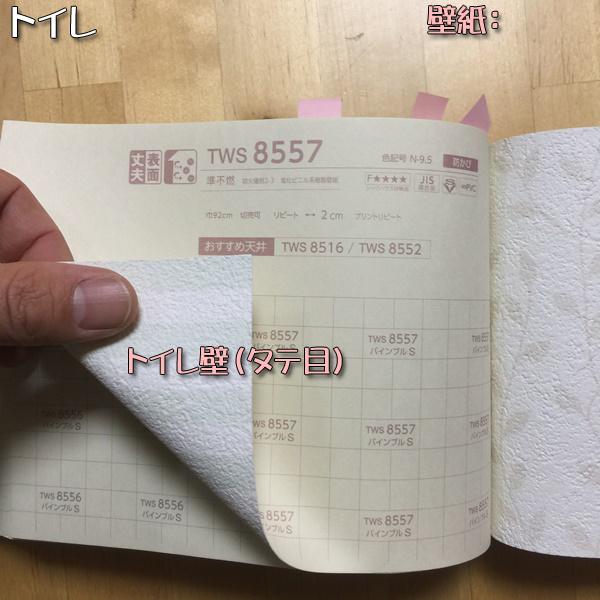 0062_1.JPG