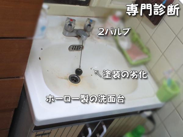 0013_1.JPG