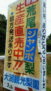 201107181259000.jpg