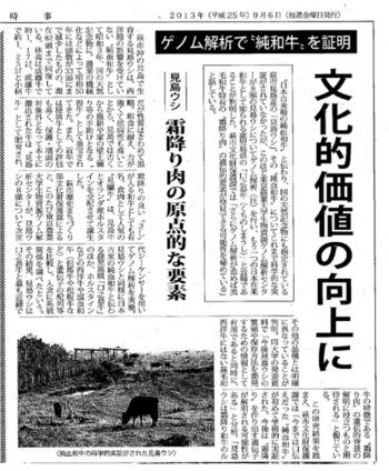 はぎ時事20130306見島牛.jpg
