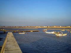 大野島の桟橋。