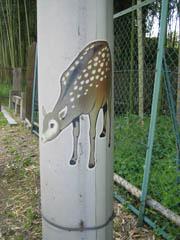 電柱にも鹿の絵