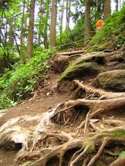 鍋ヶ滝の険しい道