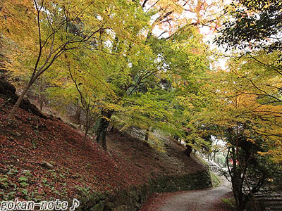 紅葉谷-2.jpg