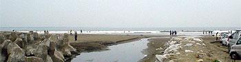 1106サンビーチ