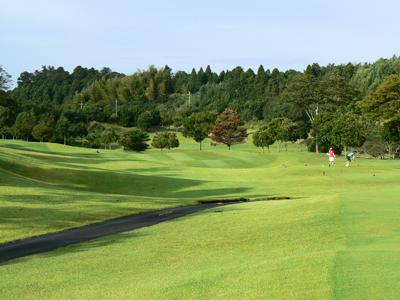 ターゲットゴルフ
