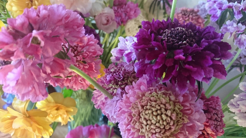 長崎の花1