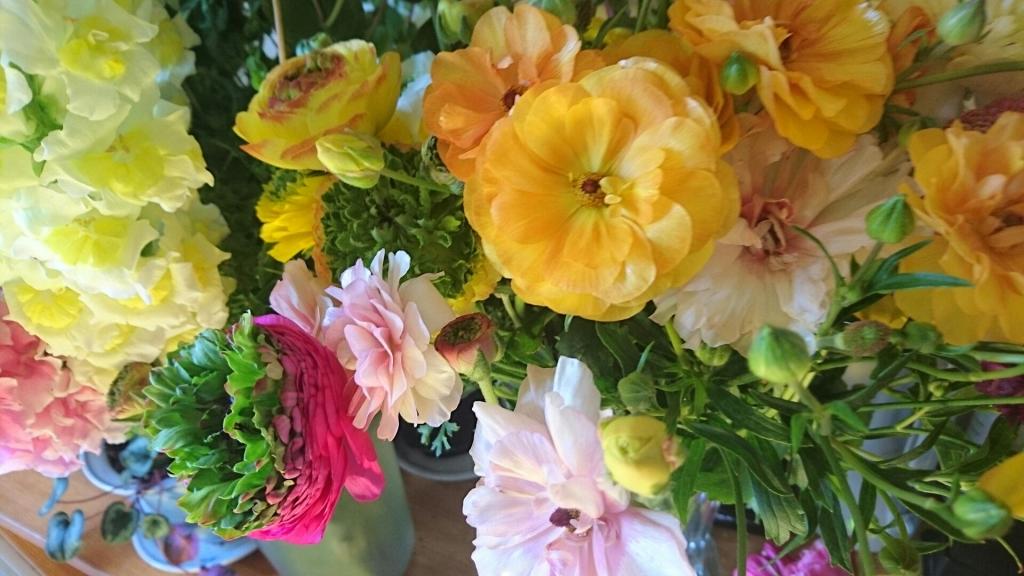 中崎の花4