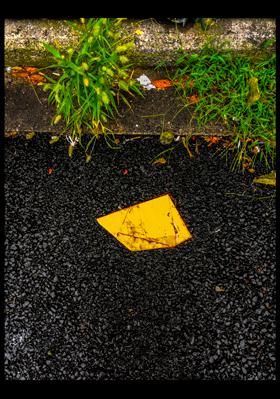 yellow-rainyday.jpg