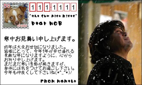 from まめこさん